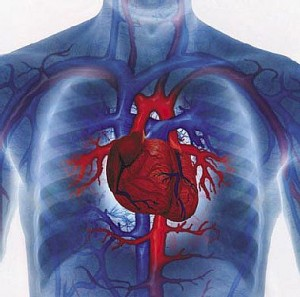 heart_disease_prevention