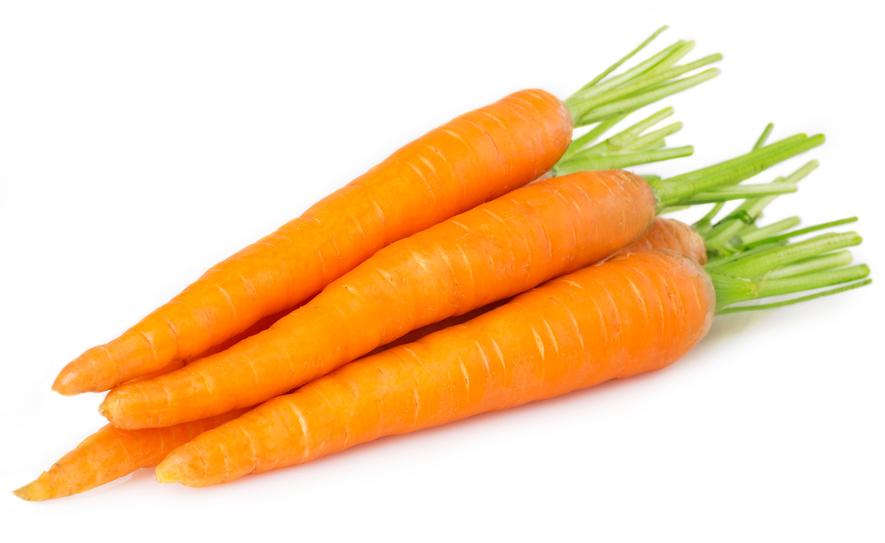 Halamang Gamot: Karot (Carrot)